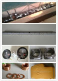 Pezzi di ricambio del motore diesel di Jdec Chidong /Shengdong