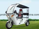 Motocicleta de 3 rodas para Disiabled