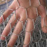 高品質の金網を耕作している六角形の電流を通された鶏
