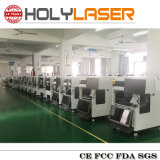 Máquina de gravura santamente do laser do laser Hsgp-4kb