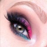 Color impermeable de la gama de colores 10 del sombreador de ojos del maquillaje del asesino de la belleza de los cosméticos de la estrella de Jeffree de la manera