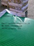Stuoia resistente all'acido del pavimento, strato di gomma industriale variopinto