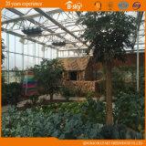 Serre chaude de jardin de serre chaude de polycarbonate de fournisseur de la Chine