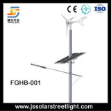 Straßenbeleuchtung-Fertigung des Solarwind-LED