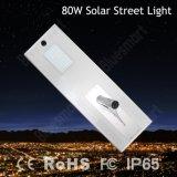 원격 제어를 가진 옥외 LED 가벼운 6W-120W 통합 태양 가로등