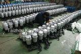 Wasser-Pumpencer-Trinkwasserpumpe (QDX1.5-16-0.37)