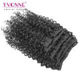 拡張のマレーシアの巻き毛の人間の毛髪クリップ、拡張のブラジルのバージンのヘアークリップ