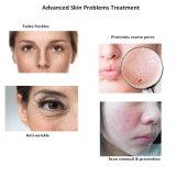 Produto natural da esponja da fonte profissional para cosméticos da beleza