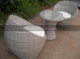 Mtc-015 Table à manger en rotin à l'extérieur en meuble en rotin
