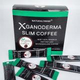 Pérdida de peso orgánica que adelgaza el café con la seta de Ganoderma