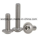 Acier inoxydable 304 Flange Hex Washer Head Socket Cap Screw