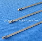 fascetta ferma-cavo rivestita poco costosa dell'acciaio inossidabile Ss316 del PVC di 12inch 4.6*300