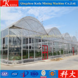 Agticulture plastic glasses Vegetable Greenhouse for Sale