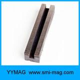2つの穴が付いているCustomedの鋳造物のアルニコの磁石