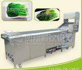 PT-2000高く効率的な野菜白くなる機械か野菜のプロセス機械