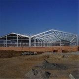 Armazém da construção de aço para o armazém e o Self-Storage da logística