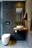 Azulejos hexagonales del suelo de cerámica del modelo del surtidor del material de construcción