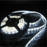 Ultrabrightの高品質、20-22lm 5050 SMDの5050のLED Flexibeのストリップ、