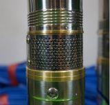 Pompe solari senza spazzola di CC del regolatore solare della pompa