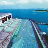 Disegno del raggruppamento del mosaico per la piscina