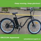 남자를 위한 En15194 승인되는 전기 자전거