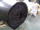 Bande de conveyeur à plusieurs fils de polyester