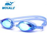 Avanzado Anti-Fog PC Lente silicona gafas de natación