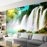 Impression extérieure personnalisée de peintures murales de papier peint de scène de dessins vifs imperméables à l'eau
