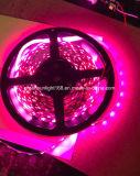 Fuente de la alta calidad de la tira de SMD 5050 LED