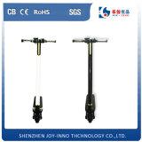 Motorino elettrico del carbonio delle rotelle della bici due di mini piegatura leggera