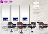 شعبيّة [هيغقوليتي] صالون أثاث لازم شامبوان حلّاق صالون كرسي تثبيت ([2037ا])