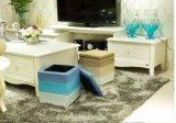 Otomano do armazenamento da mobília/cadeira Home (BC-SO1002)