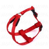 新しい方法箱はLEDペット鎖を紐で縛る