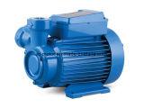 Kp 60c 시리즈 깨끗한 물 펌프