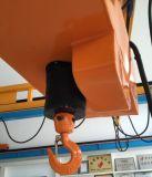Élévateur à chaînes électrique avec la grue de Kbk pour les lieux de travail venteux et poussiéreux