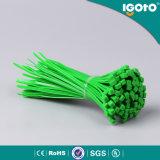 Commande en plastique de serre-câble de ventes en gros de la Chine de Chine directe