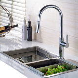 A cozinha retira o Faucet de água de bronze do pulverizador