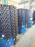 Élévateur à chaînes de 0.5 tonne 3m avec le double crochet