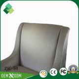 Moderner Form-Raum-Stuhl für Patio in der Buche (ZSC-50)
