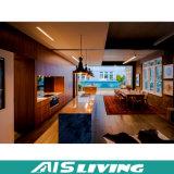 Muebles modulares de las cabinas de cocina del laminado de madera natural del grano (AIS-K055)