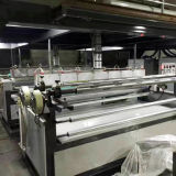 LDPE & Llepe 기포 필름 생산 설비