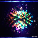 Inkt van de Sublimatie van de Kleurstof van het neon de Fluorescente Geel/Magenta voor Epson F6070 Dx5/Dx7/5113
