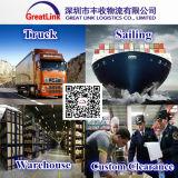 Exportação/importação internacionais do frete de mar de China a France