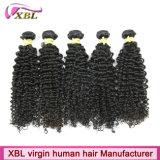Cheveux bouclés brésiliens d'usine expérimentée de cheveux humains