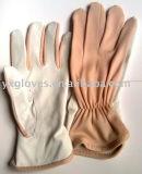 Lederner Handschuh-Nylon Handschuh-Sicherheit Handschuh-Garten Handschuh-Bearbeiten Handschuh