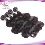 Hochwertige Karosserien-Wellen-Menschenhaar-Extensions-unverarbeitetes Großhandelsjungfrau-Brasilianer-Haar