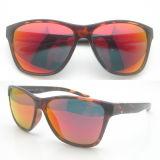 Nuevas gafas de sol de los deportes del capítulo del plástico