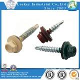 Vis Drilling d'individu de tête Hex de l'acier inoxydable 316 avec la rondelle en caoutchouc