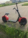 Motorino senza spazzola di Citycoco di mobilità del motore di CC con il motore 1000W