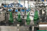 Завершите автоматическую линию безалкогольного напитка стеклянной бутылки Carbonated заполняя